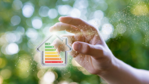 10 Eco-Friendly Updates to Save Energy this Autumn